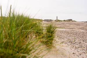 Old lighthouse of Skagen, Denmark with small sand dunes around (Flip 2019)