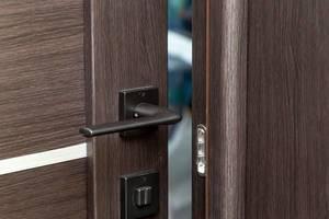 Open brown interior door with handle (Flip 2019)