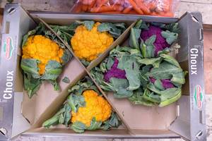 Oranger und violetter Blumenkohl in Gemüsekiste am Timeout Market in Lissabon