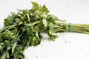 Organic fresh bunch of parsley