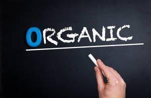 Organic text on blackboard