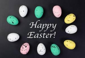 Ostergruß HAPPY EASTER (frohe Ostern) umringt von farbigen Ostereiern auf schwarzem Hintergrund