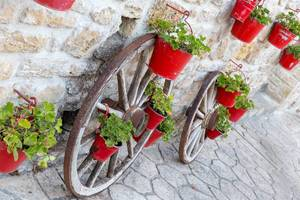 Oxcart wheels and red flowerpots