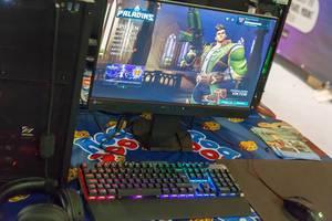 Paladins: Champions of the Realm läuft auf einem PC