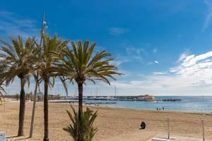 Palmen am gelben Sandstrand Platja del Somorrostro an der Mittelmeerküste von Barcelona, Spanien