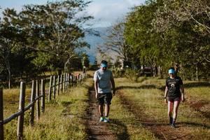 Pärchen beim Spaziergang in der Natur auf einem Feldweg gesäumt mit Bäumen