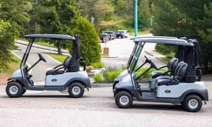 Park Golf Carts