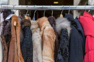 Pelzkleidung auf Kleiderbügeln zum Verkauf in einem Geschäft