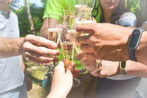 People cheering with champagne glasses on a summer day in the forest