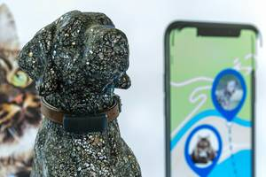 """Pet collar with tracking device: """"tractive"""" GPS tracking for dogs and cats"""