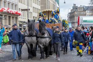 Pferdewagen des Vereins Treuer Husar beim Rosenmontagszug - Kölner Karneval 2018