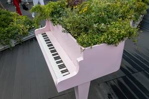 Piano als riesiger Blumentopf