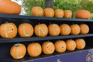 Pier Pumpkin Lights for Halloween