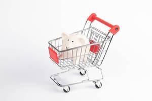 Piggybank in shopping cart