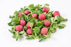 Pile of Red Radishes on the Baby Spinach (Flip 2019)