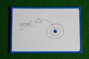 Plan how to reach goal
