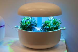 Plantui smart garden device at IFA Berlin 2018