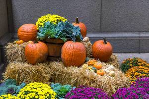 Pumpkins, flowers and hay: colourful Halloween decoration on the streets of Chicago