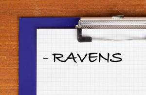 RAVENS text on clipboard
