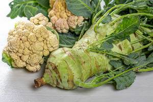 Raw cauliflower and kohlrabi