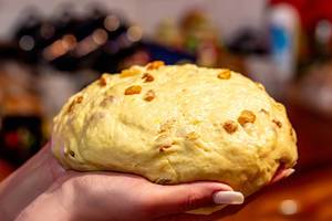 Raw dough with raisins for buns in women