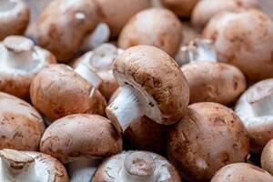 Raw royal mushrooms