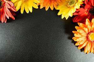 Red, orange, and yellow flower frame on a black surface