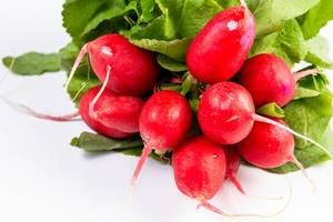 Red Radishes above white background