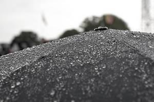 Regentropfen auf einem schwarzen Regenschirm