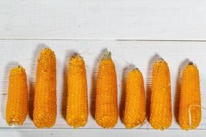 Reife Maiskolben auf weißem Hintergrund