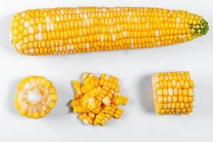 Reifer Maiskolben und einzelner Mais vor weißem Hintergrund