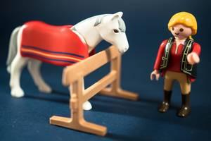 Reiter spricht mit seinem Pferd