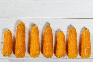 Ripe corn on wooden background