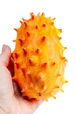 Ripe kiwano fruit in women hand