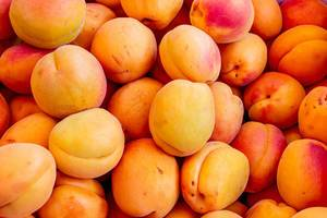 Ripe orange apricots background (Flip 2019)