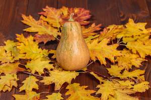 Ripe pumpkin with autumn leaves on old wooden background