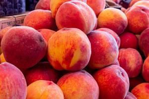 Ripe red-orange peaches background (Flip 2019)