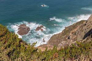 Rocks in the ocean at the coast of Cabo da Roca with Carpobrotus edulis plant in front