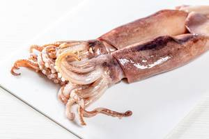 Rohe Tintenfische mit Tentakeln, auf einem weißen Küchenbrettchen