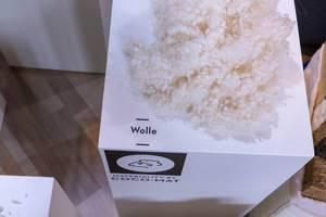Rohstoff Wolle für Verarbeitung bei Produktion von ökologischem Holzfahrrad auf weißem Tisch