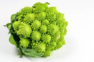 Romanesco broccoli cabbage (or Roman Cauliflower) on white background