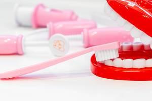 Rosa Zahnbürste putzt die falschen Zähne eines offenen Gebissmodells, mit Zahnarztutensilien im Hintergrund