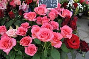 Rosen am Wiener Naschmarkt
