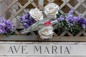 Rosen über dem Ave Maria Denkmal in Rom