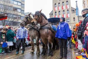 Rosenmontagsumzug in Köln: Pferde ziehen den Wagen der Kölner Funken Artillerie blau weiß v. 1870 bei regnerischem Wetter