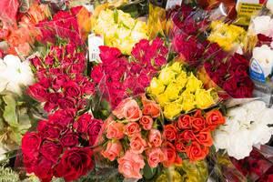 Rosensträuße in verschiedenen Farben