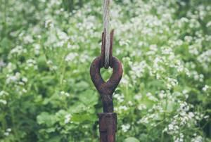 Rostiges Seil im Hinterhof