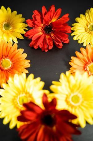 Rote, orange und gelbe Blumen bilden ein Herz