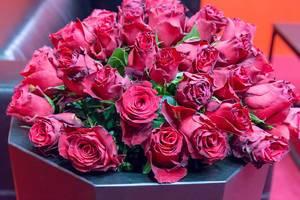 Rote Rosen unter blauem Licht