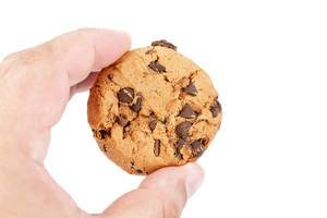 Round Chocolate Biscuit in the hand (Flip 2019)